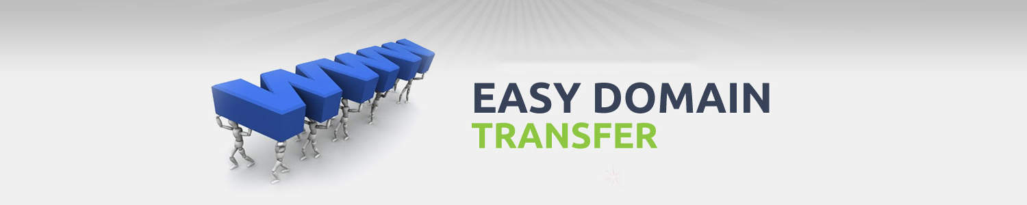 How to transfer domain easily