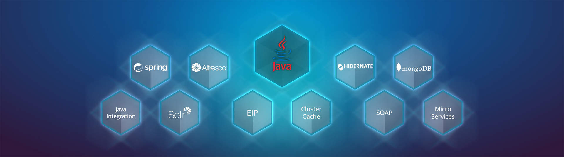 Java Development Delhi