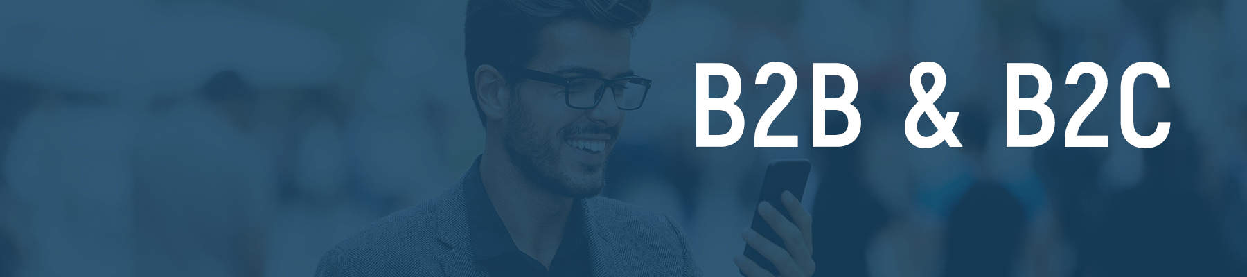 B2B / B2C Recharge Portals